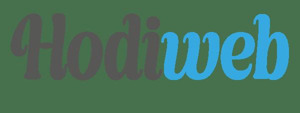 HodiWeb - Profesyonel Web Ajansı